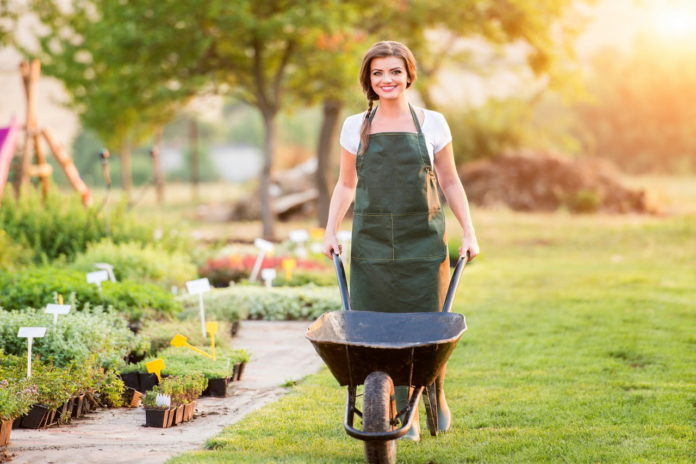 Zdrowie a pielęgnacja ogrodu